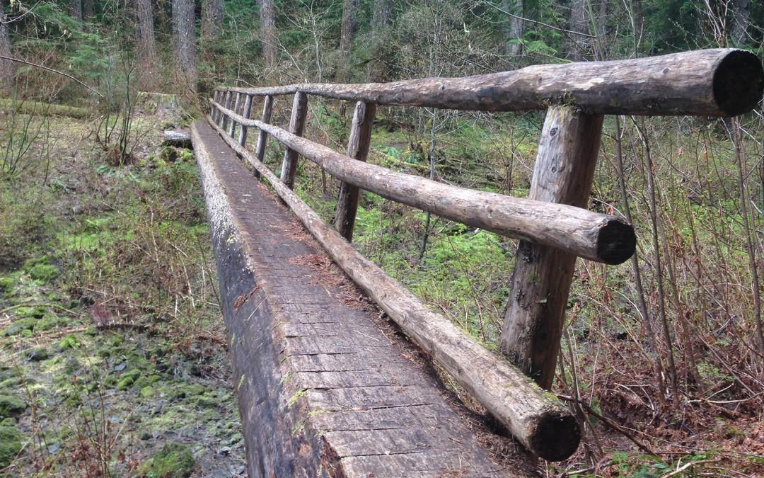 McKinsey-River-Trail-Otis-Craig