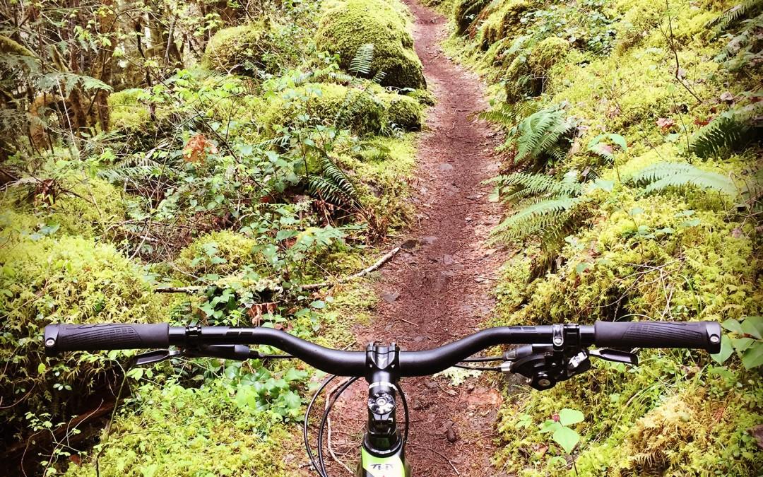 McKinsey-River-Trail-5