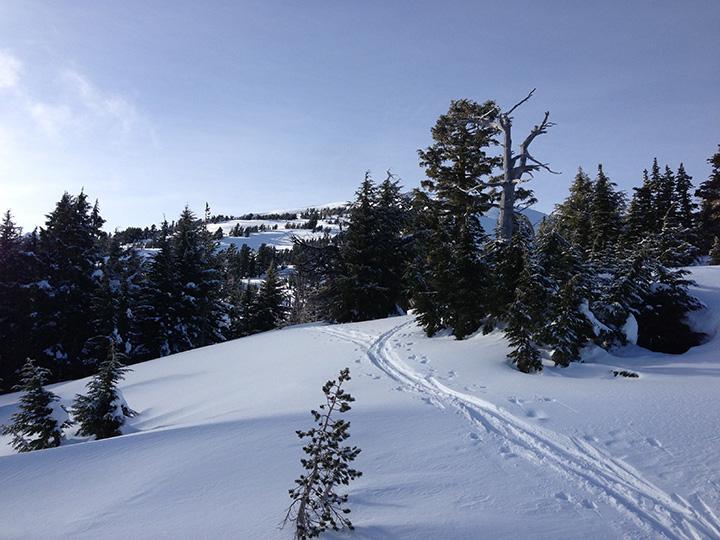 backcountry-skiing-mount-bailey-6